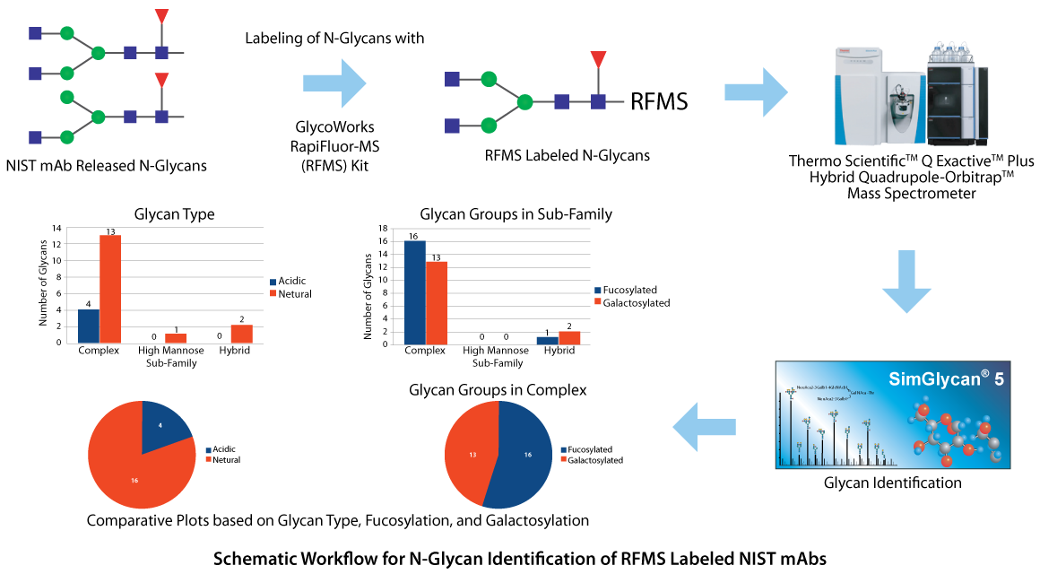 Schematic Workflow for N-Glycan Identification of RFMS Labeled NIST mAbs